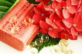 Colorful spy composition. Natural soap and flower — Photo