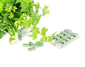 Herbal medicine with green plant — Stock Photo