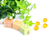 Pieces of organic soap with green plant — Stock Photo