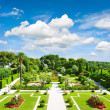 Beautiful mediterranegarden on french riviera — Stock Photo #13763057