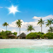 Landscape of tropical island beach with palm trees — Stock Photo #13763556