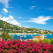 Beautiful mediterranean landscape. french riviera — Stock Photo #13764839
