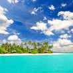 ヤシの木と熱帯の白い砂のビーチ — ストック写真