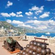 Panoramic view of Monaco - Stock Photo