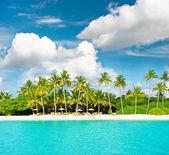 Sunny beach landscape with cloudy sky — Stock Photo