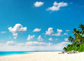 Palm beach. tropical island landscape — Stock Photo