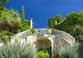 美丽的热带花园,在蓝蓝的天空。地中海景观 — 图库照片