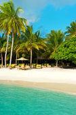 ヤシの木と美しい熱帯砂のビーチ — ストック写真