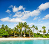 Tropical island beach with perfect blue sky — Stock Photo