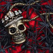 Zwarte spin en kever met schedel op rood — Stockfoto