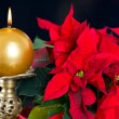 Red christmas star with golden candle — Stock Photo #13990588