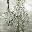 Shiny silver star. christmas decoration — Stock Photo
