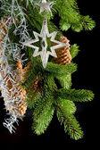 Christmas tree with shiny silver star decoration — Stock Photo