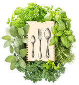 Cookbook with variety fresh herbs — Stock Photo