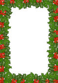 Holly berries frame. christmas decoration — Stock Photo
