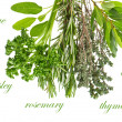 Herbs rosemary, sage, bay leaves, parsley and thyme — Stock Photo #14006155