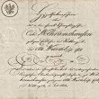 Old manuscript with calligraphic handwritten text — Stock Photo #14075743