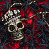 Araña negra y escarabajo con cráneo rojo. concepto de halloween — Foto de Stock