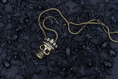 Aranha preta e besouro com decoração de crânio — Foto Stock