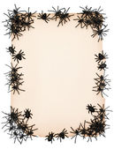 Kağıt arka plan siyah örümcek ile — Stok fotoğraf