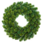 Green christmas wreath isolated on white — Stock Photo