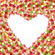 Colorful tulip flowers. beautiful flower frame in heart shape — Stock Photo