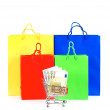 Colorful bags and cart with cash notes — Stock Photo
