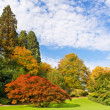 Beautiful park in autumn. public garden — Stock Photo