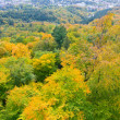 Stock Photo: Autumn landscape. aerial view over baden-baden from old castle
