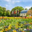 Stock Photo: Landscape with colorful flowers and blue sky. germany, baden-bad
