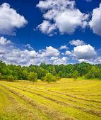 Paisagem do país. feno no outono campo sob o céu azul nublado — Fotografia Stock
