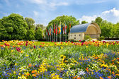 Landscape with colorful flowers and blue sky. germany, baden-bad — Stock Photo
