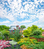 Landscape with colorful flowers and blue sky. germany, stuttgart — Stock Photo
