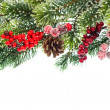 Christmas tree branch with red decoration — Stock Photo