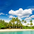 Tropical island beach with perfect blue sky — Stock Photo #14229131