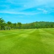 Golf Course, Lansdcape with Palms — Stock Photo #14468021