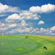 Golf field landscape — Stock Photo