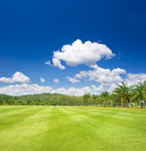 Tropical landscape. golf field with palm trees — Stock Photo