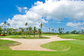 Beautiful golf course. sand trap anf palm trees — Stock Photo
