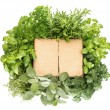 Variety fresh herbs and old recipe book - Stock Photo