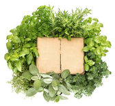 Variety fresh herbs and old recipe book — Stock Photo