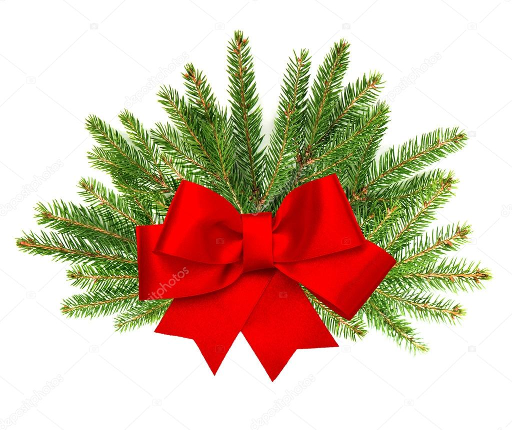 Christmas Tree With Red Ribbon: Branch Of Christmas Tree With Red Ribbon Bow