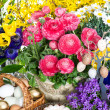 Spring flowers with easter cake and eggs decoration — Stock Photo