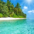Tropical island beach with perfect sky — Stock Photo