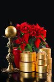 Rojo flor de pascua con regalos de oro sobre fondo negro — Foto de Stock