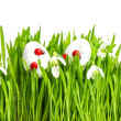 Fresh green grass with flowers and easter eggs — Stock Photo #18213795