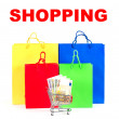 Stock Photo: Shopping concept. Colorful bags and cart with cash