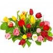 Stock Photo: Fresh tulips isolated on white background
