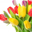 Bouquet of fresh colorful tulips over white — Stock Photo