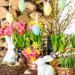 Spring flowers with easter bunny and eggs decoration — Stock Photo #21839683